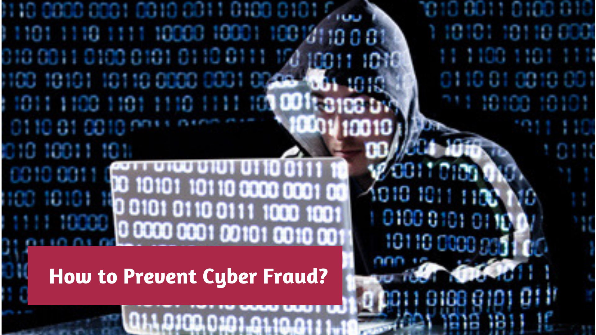 How to Prevent Cyber Fraud?